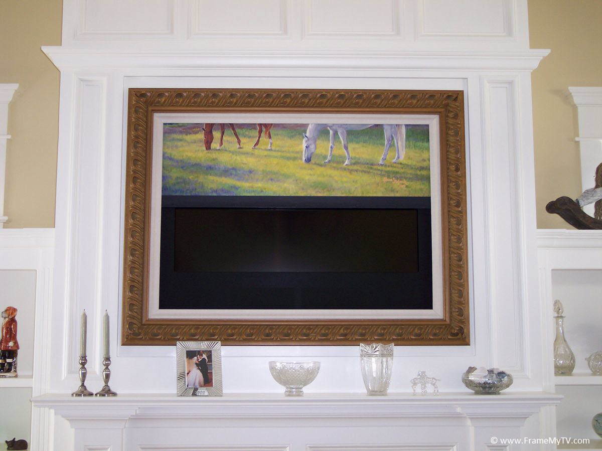 Picture Frame Television Gallery