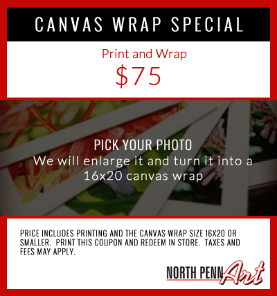 canvaswrap-coupon